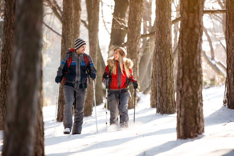 Vrouwelijke en mannelijke wandelaar die in bos lopen stock afbeelding