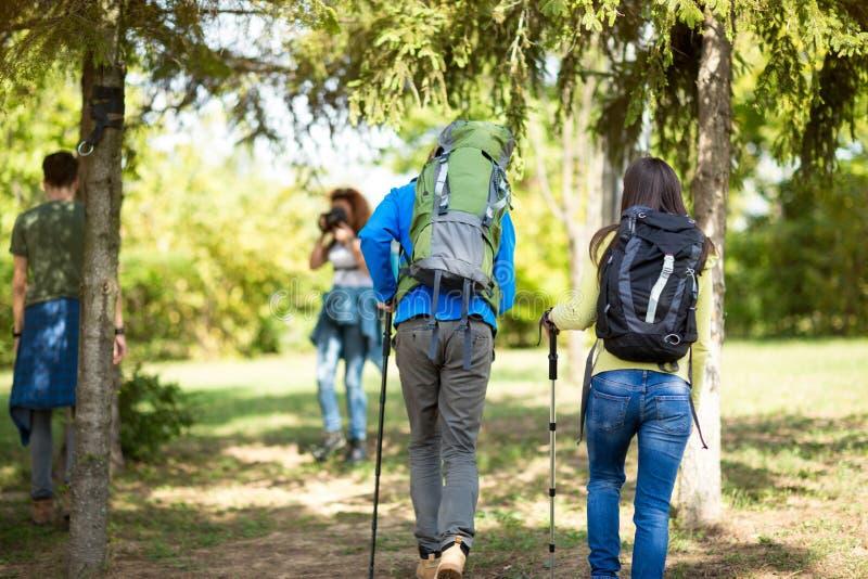 Vrouwelijke en mannelijke wandelaar met rugzakken in bos stock foto