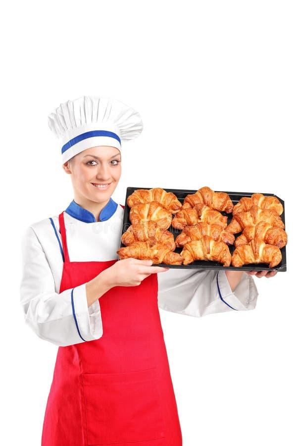 Vrouwelijke gebakjechef-kok die een panhoogtepunt van croissants houden stock afbeeldingen