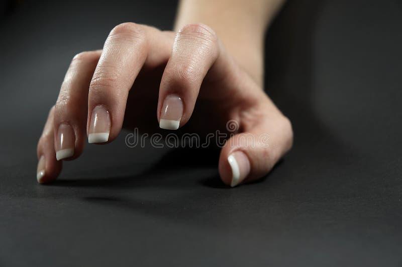 Vrouwelijke hand 2 stock afbeelding