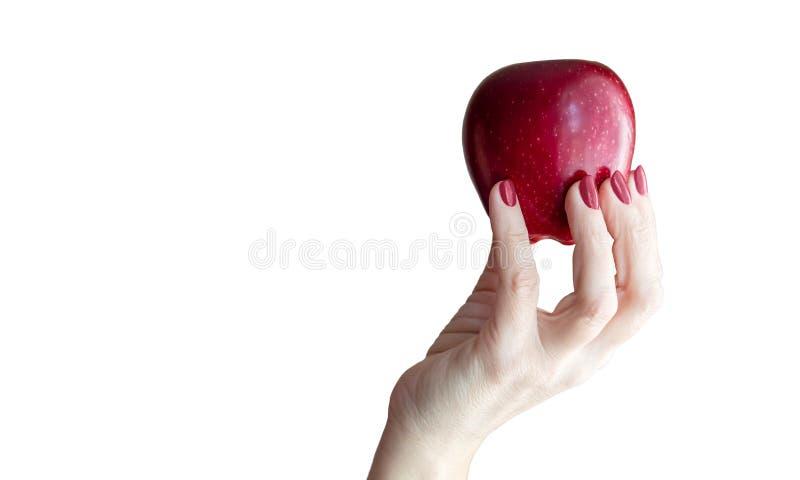Vrouwelijke hand die een rode appelclose-up houden stock foto