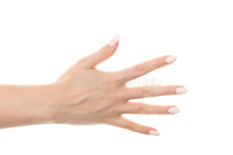 vrouwelijke hand die het gebaar met vijf vingers tonen royalty-vrije stock foto's
