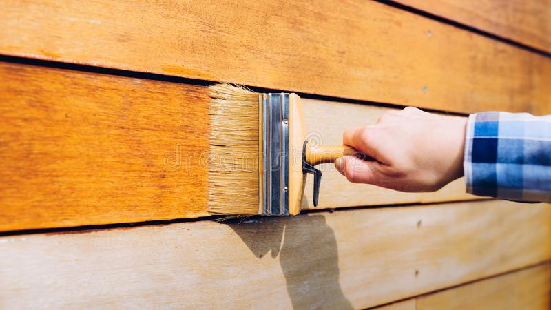 Vrouwelijke hand die houten muur met een borstel schilderen royalty-vrije stock foto's