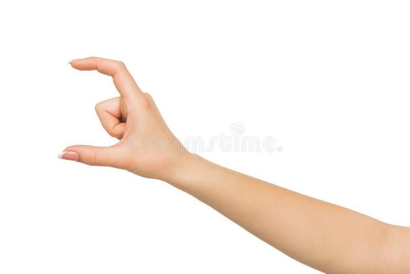 Vrouwelijke hand die iets, knipsel, gebaar meten royalty-vrije stock afbeelding