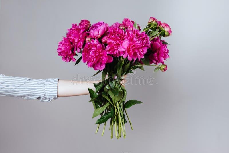Vrouwelijke hand die mooi boeket met geurige pioenen houden royalty-vrije stock foto's