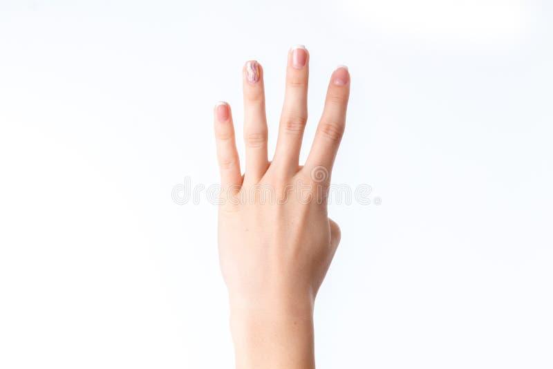 Vrouwelijke hand die vier vingers toont stock foto's