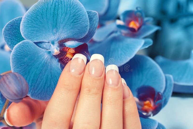 Vrouwelijke hand met Franse manicure royalty-vrije stock fotografie