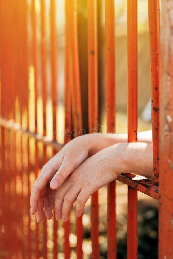 Vrouwelijke handen achter de bars van de gevangeniswerf stock foto