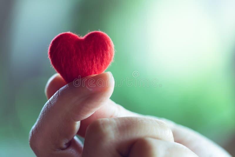Vrouwelijke handen die een weinig rood hart, de dagconcept houden van Valentine stock afbeelding