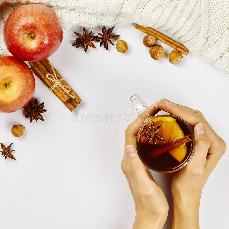 Vrouwelijke handen die glaskop van heet kruidig T-stuk met appel en oranje plakken, kaneel en anijsplant over witte achtergrond h stock foto's