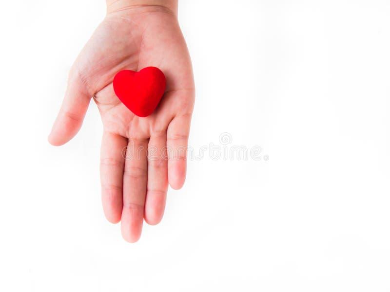 Vrouwelijke handen die rood hart op witte achtergrond geven stock fotografie