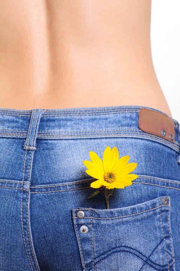 Vrouwelijke jeans met bloem in zak stock fotografie