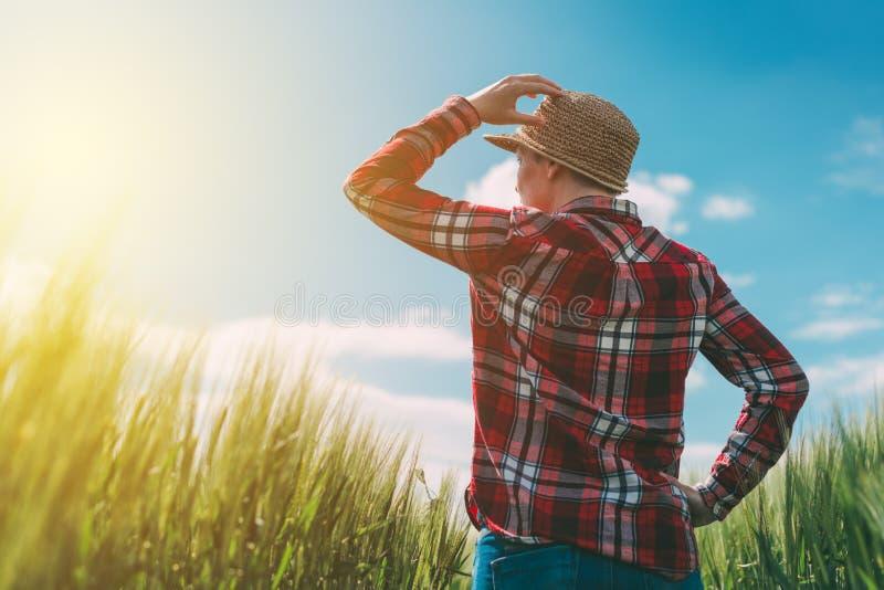 Vrouwelijke landbouwer die de zon op de horizon bekijken stock foto's