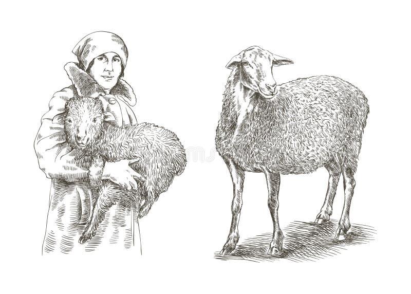 Vrouwelijke landbouwer die een lam in zijn handen houden royalty-vrije illustratie