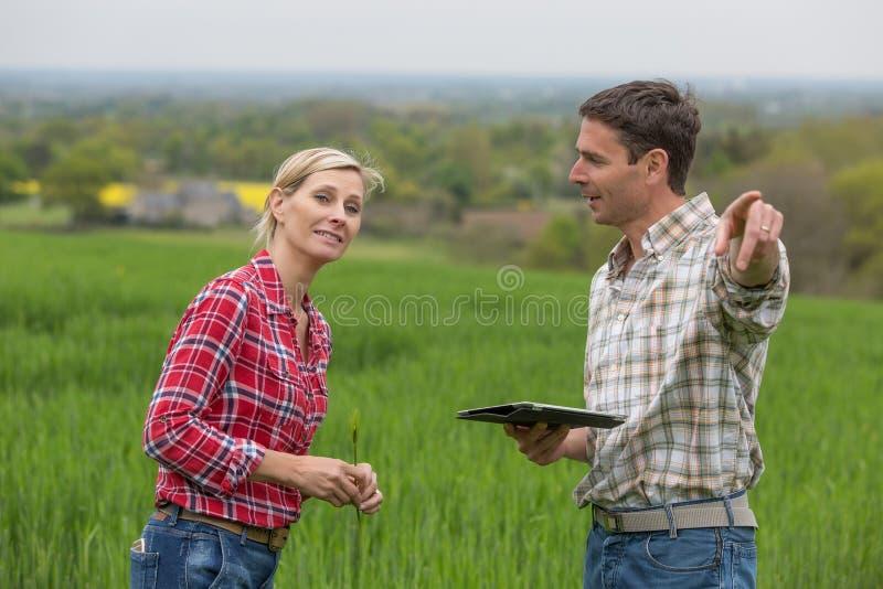 Vrouwelijke landbouwer met agronoomtechnicus stock foto