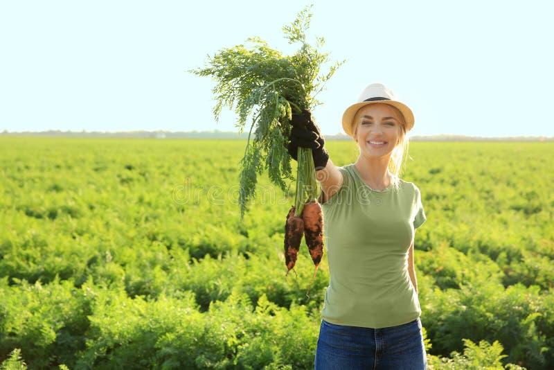 Vrouwelijke landbouwer met verzamelde wortel op gebied stock foto