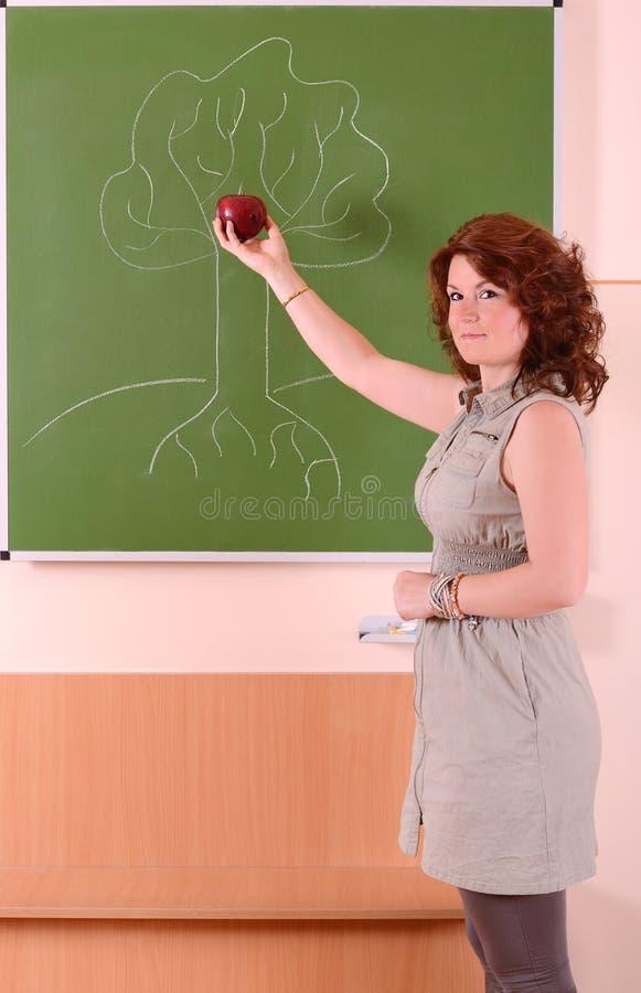Vrouwelijke leraar in wetenschapsklasse royalty-vrije stock afbeeldingen