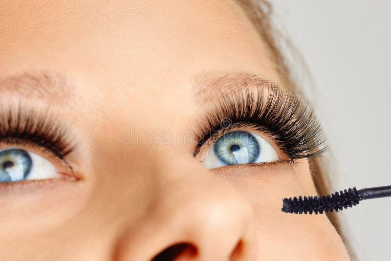 Vrouwelijke ogen met lange wimpers en borstel van mascara Samenstelling en schoonheidsmiddelenconcept stock afbeelding