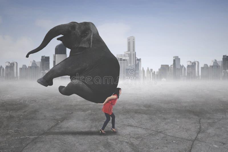 Vrouwelijke ondernemer die een olifant dragen royalty-vrije stock afbeeldingen