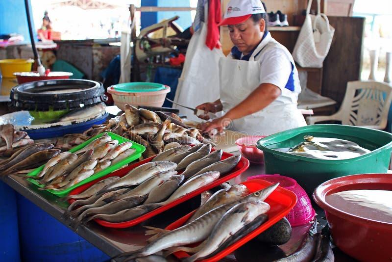 Vrouwelijke Peruviaanse verkoper bij een markt van vissenzeevruchten stock afbeelding