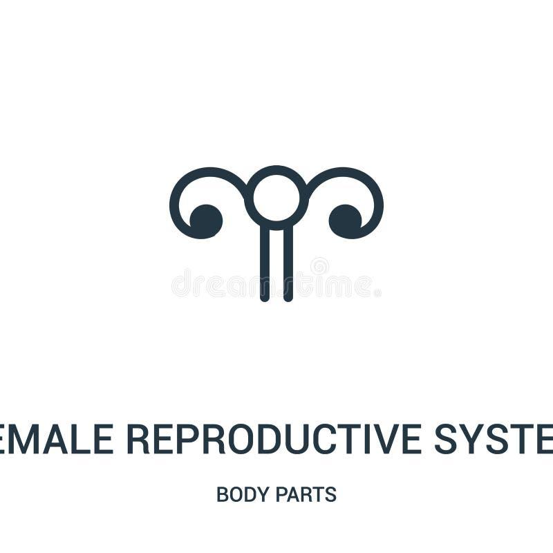 vrouwelijke reproductieve het pictogramvector van de systeemvertegenwoordiging van lichaamsdeleninzameling Dun lijn vrouwelijk re vector illustratie