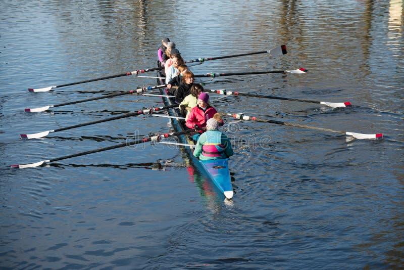 Vrouwelijke roeiers die op rivier opleiden royalty-vrije stock afbeelding