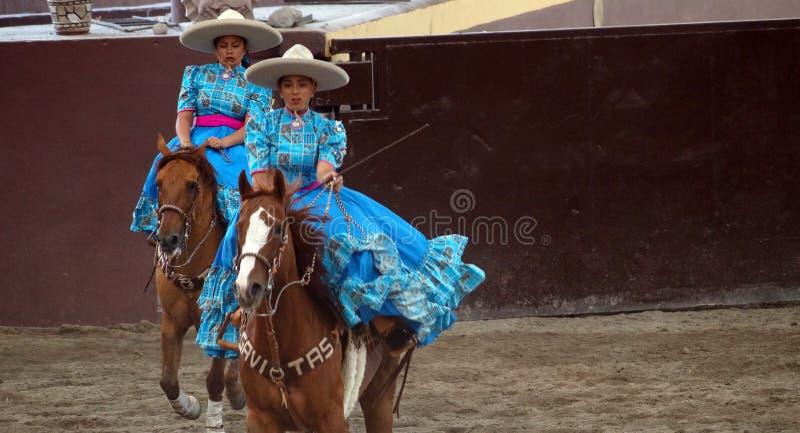 Vrouwelijke ruiters in blauwe kleding stock afbeeldingen