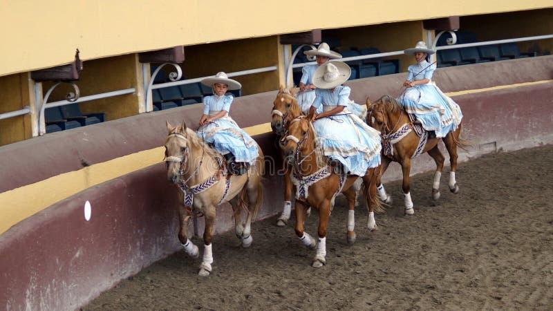 Vrouwelijke ruiters in lichtblauwe kleding royalty-vrije stock foto