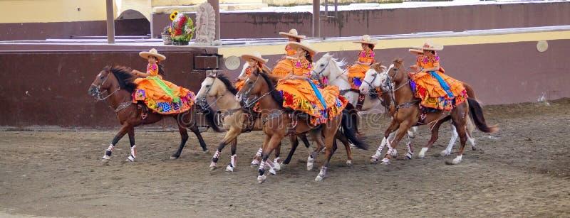 Vrouwelijke ruiters in oranje kleding stock afbeelding