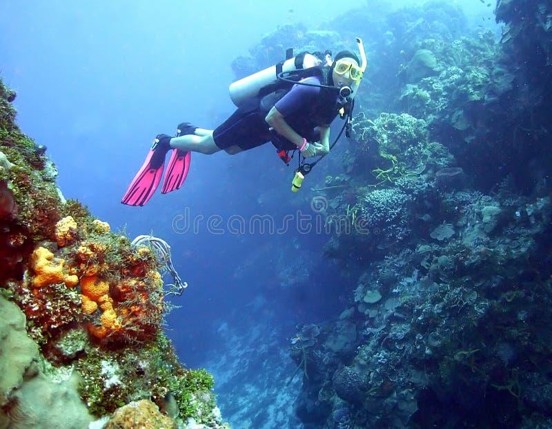 Vrouwelijke Scuba-duiker stock foto's