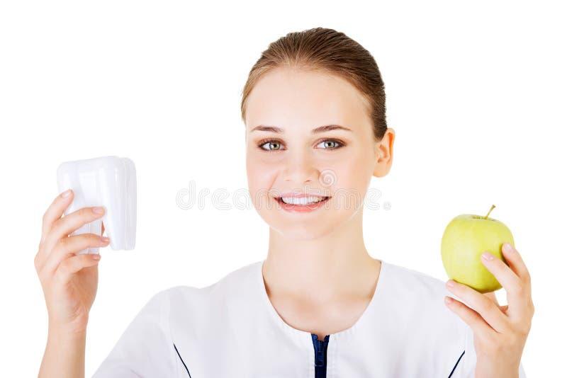 Vrouwelijke tandarts met groene appel en grote tand royalty-vrije stock foto's
