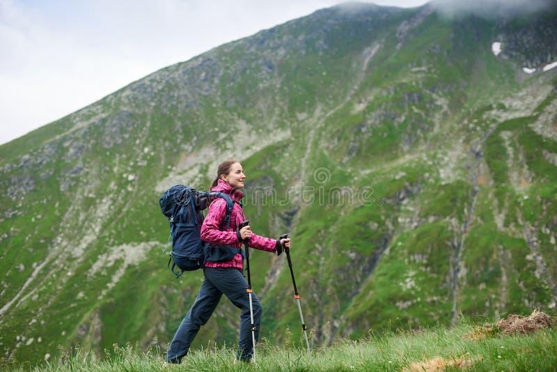 Vrouwelijke toerist die omhoog groene helling voor mooie rotsachtige bergen lopen dichtbij Transfagarashan-weg in Roemenië stock afbeelding