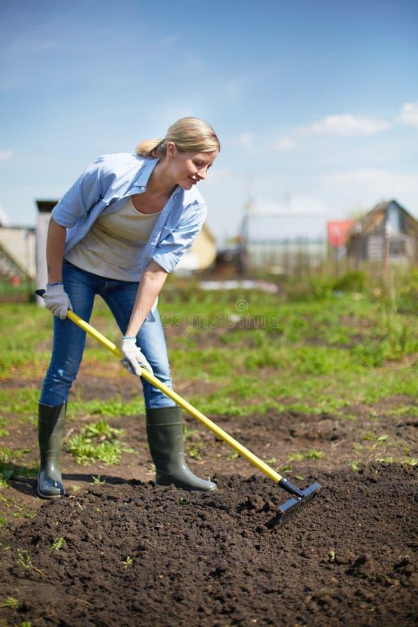 Vrouwelijke tuinman royalty-vrije stock foto