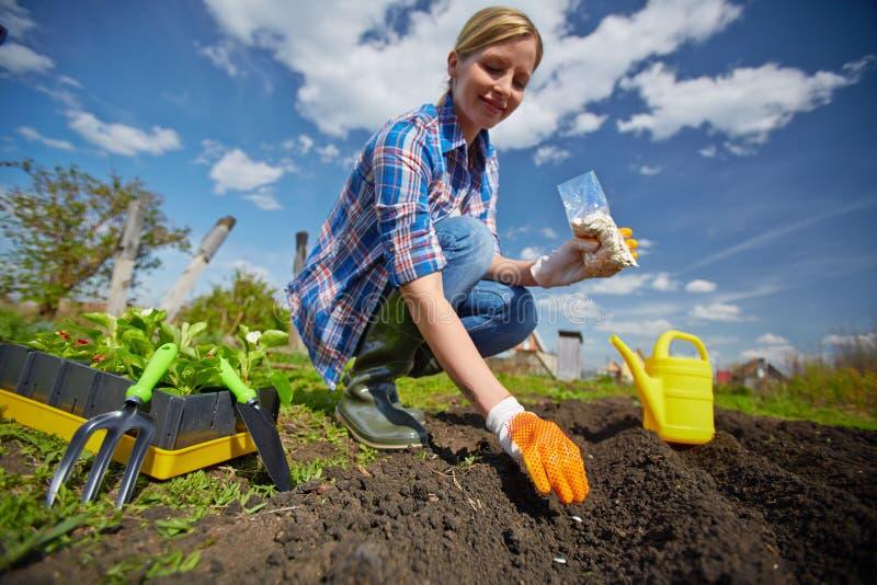 Vrouwelijke tuinman stock afbeelding