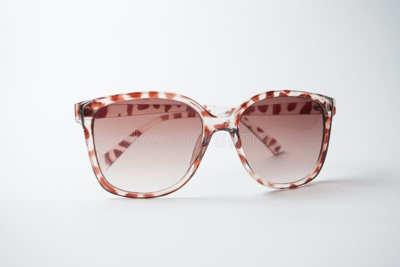 Vrouwelijke uitstekende zonnebril stock foto