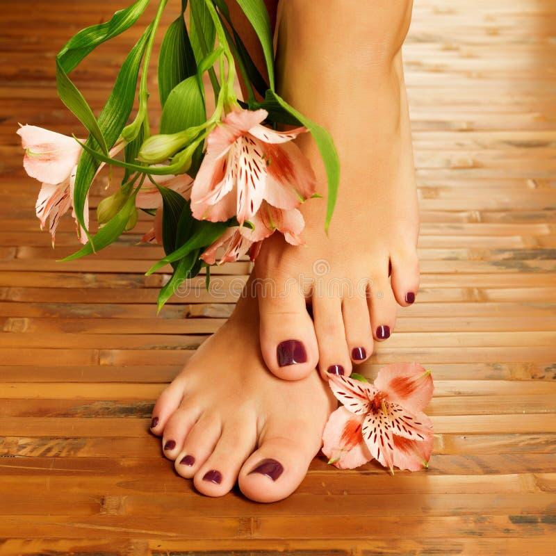 Vrouwelijke voeten bij kuuroordsalon op pedicureprocedure stock afbeeldingen