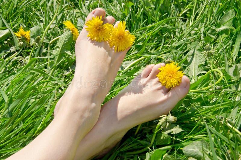 Vrouwelijke voeten met bloemen op gras stock afbeeldingen