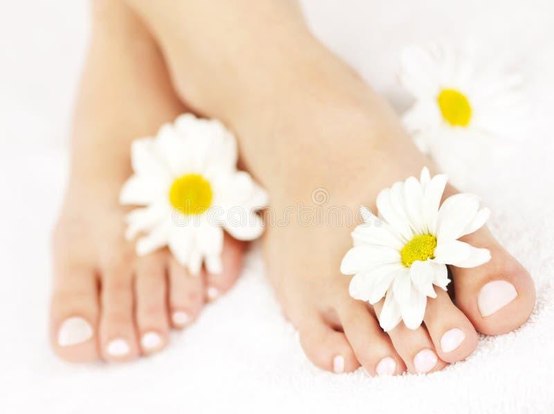 Vrouwelijke voeten met pedicure stock afbeeldingen