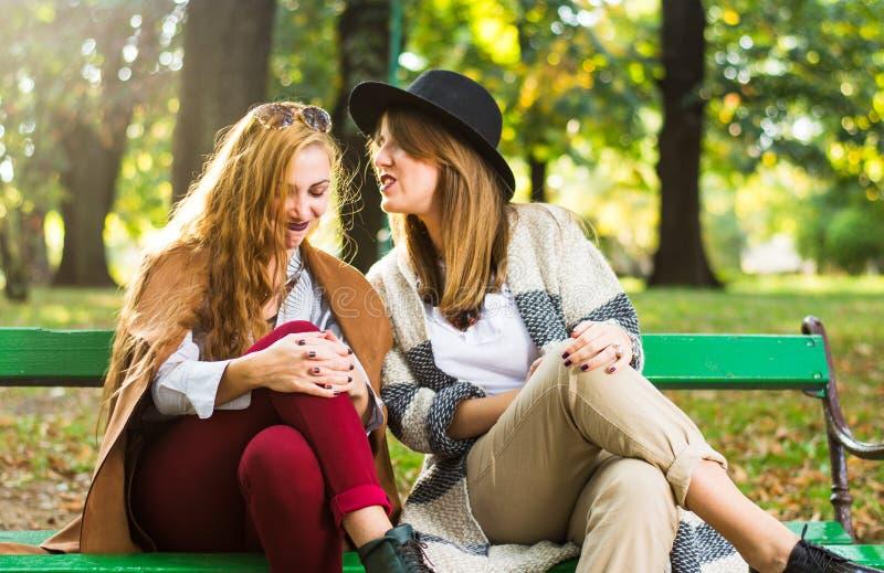 Vrouwelijke vrienden die in het park roddelen stock foto