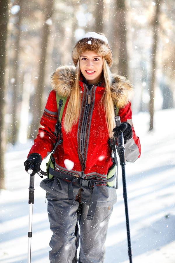 Vrouwelijke wandelaar in bos op de winter royalty-vrije stock fotografie