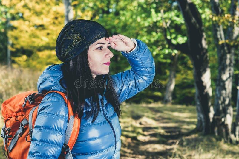 Vrouwelijke wandelaar die bos zoeken stock foto's