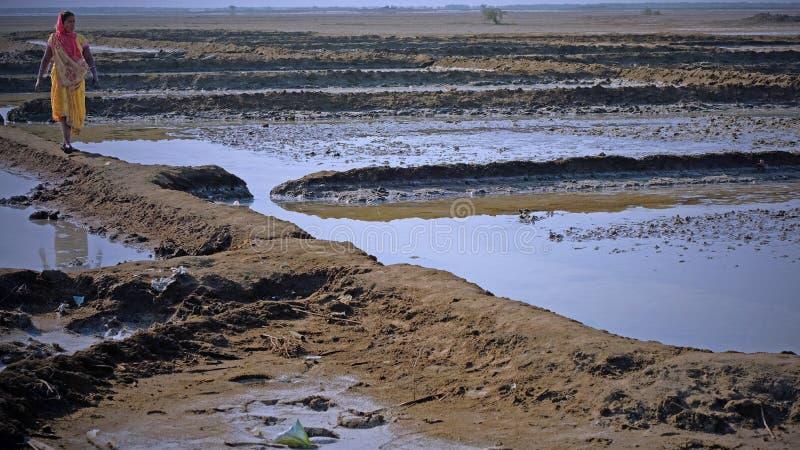 Vrouwelijke werknemer in de zoute vlakten van Gujarati, India stock fotografie