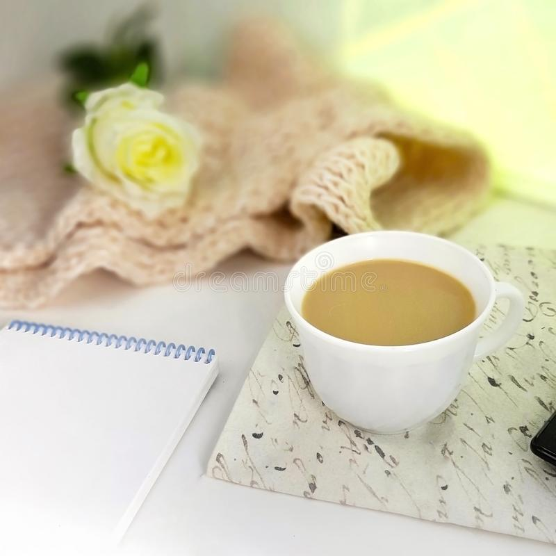 Vrouwelijke werkplaats met comfortabele manierdetails stock afbeelding