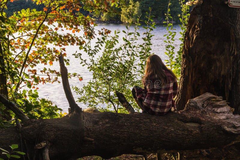 Vrouwelijke zitting op boom die van de mening met een overzees op de achtergrond genieten royalty-vrije stock afbeelding
