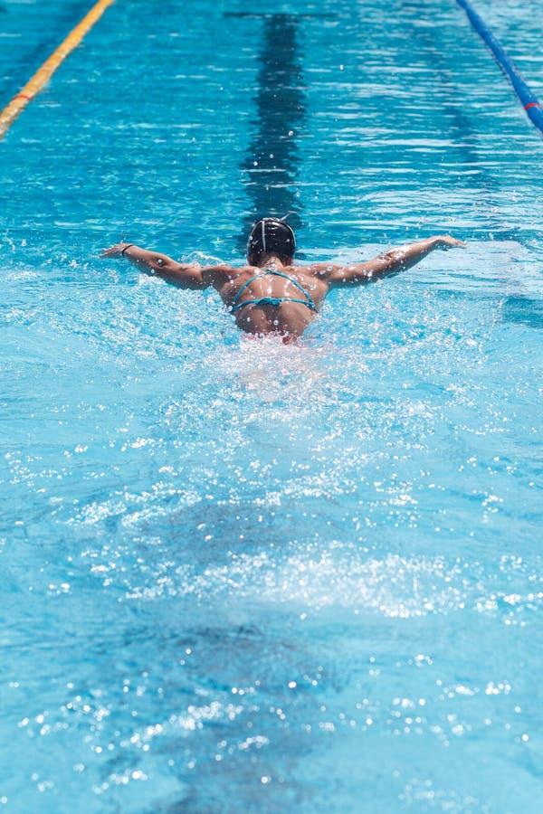 Vrouwelijke zwemmer in zwembad, achtermening royalty-vrije stock fotografie