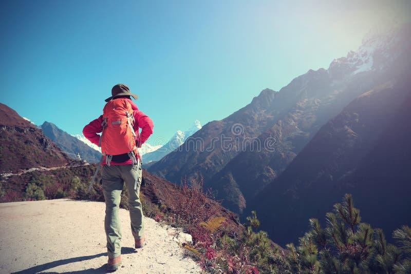 Vrouwen backpacker trekking bij de bergen van Himalayagebergte stock foto's
