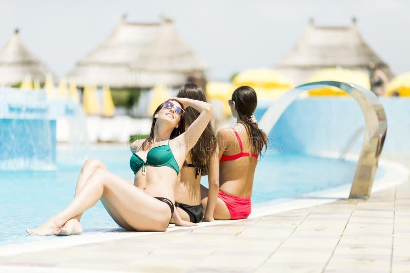 Vrouwen in de pool royalty-vrije stock foto's