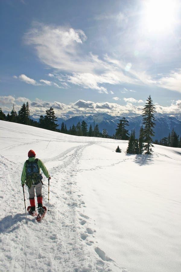 Vrouwen in de winter wandeling stock afbeeldingen