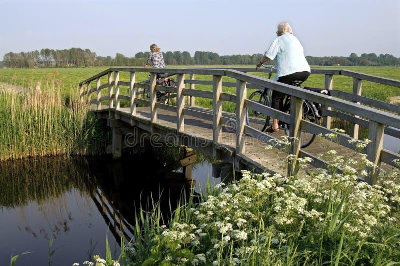 Vrouwen die fiets in het landschap van de polder berijden royalty-vrije stock afbeeldingen