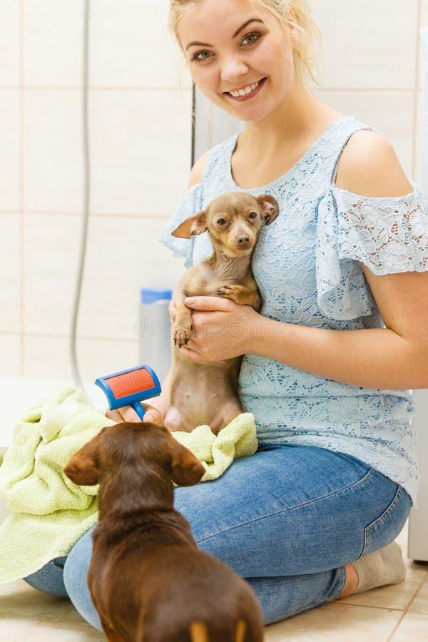 Vrouwen drogende hond na bad royalty-vrije stock foto